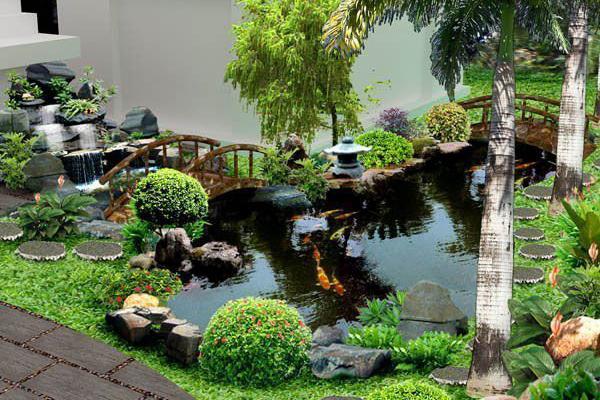 Sân vườn hồ cá KOI
